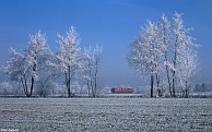 Bild-Nr.: 2006615.jpg